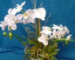 Silk white orchid in ceramic pot